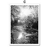 TYLPK Forest River Landschaft Leinwand Malerei Kunst Wand Poster C1 20X25 cm No Framed