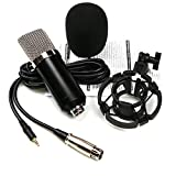 JAJIQIJU USB-Mikrofon-Set, Dynamische Karaoke-Mikrofon for Gesang for...