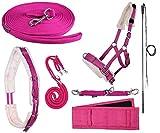 netproshop Longieren Zubehör Farbe Pink Wählen Sie: Zaum, Longe, Pad oder Gurt usw,...