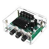 ILS - DC 12V-24V TPA3116D2 2x80W Stereo-Verstärker Audio Board TPA3116 Digital-Verstärker...