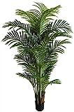 Seidenblumen Roß Hawaiipalme 150cm DA künstliche Zimmerpalme Palmen Kunstpalmen Kunstpflanzen...