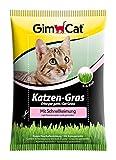 GimCat Katzen-Gras mit Schnellkeimung - Saatmischung aus kontrolliertem Feldanbau für schnelle...