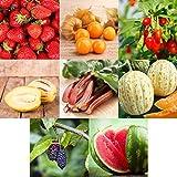 Prademir Obst Samen Set 8 Sorten Frucht Mix Obst Garten Saatgut Geschenke für kinder Hochbeet...