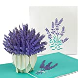 PaperCrush Pop-Up Karte Blumen Lavendel - 3D Blumenkarte fr beste Freundin oder Mutter...