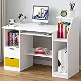 FMIKA Computertisch Multifunktional Groß with 2 Drawers Schreibtisch kompakter Schnellaufbau mit...