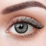 GO MAXIY GIRL Löwenzahn + Behälter   Sehr stark deckende natürliche Kontaktlinsen farbig  ...