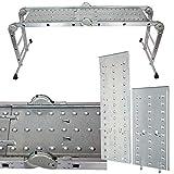Intercon Mehrzweckleiter Aluleiter bis 150 kg, 12 Stufen mit 2 Gerstplatten EN 131 TV Rheinland GS