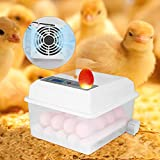 TOPQSC Vollautomatischer Inkubator 16 Digital Clear Egg Inkubator, Auto Flip Eierbrutkasten mit LED...