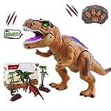 WISHTIME Fernbedienung Dinosaurier ElectricToy Kinder RC Tierspielzeug LED Leuchten Dinosaurier...