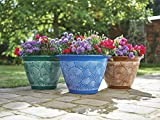 Greenhurst Pack of 3 Brompton Planters - Coloured Pflanzgef Terracotta Blue