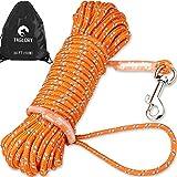 Taglory Schleppleine 10m für Hunde bis 20 kg, Lange Seil Ausbildungsleine Leine für Welpen und...