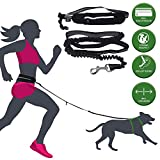 barf-alarm Joggingleine Hunde mit Bauchgurt inkl Tasche  180cm Reflektierende Freihandleine  Taille...