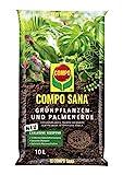 COMPO SANA Grünpflanzen- und Palmenerde mit 12 Wochen Dünger für alle Zimmer- und Balkonpflanzen...