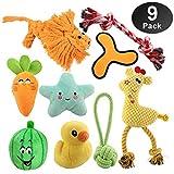 HomeMall Hundespielzeug Quietschenspielzeug,Seil Kinderkrankheiten Plüschspielzeug für Kleiner...