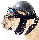 ShopTrend Hundemütze mit Schutzbrille Reitmütze