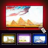 TV Hintergrundbeleuchtung für Fernseher 65 70 75 80 82 Zoll TV LED Streifen USB TV Backlight (RF...