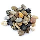 hibuy Flusskiesel/Kiesel - Deko Steine - poliert - 25-40 mm groß - 1000 g