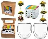 TEEBLUMEN-GESCHENKSET / 2x 310ml DUOS Jumbo Doppelwandgläser + 6er Box Teeblumen grüner Tee in...