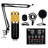 BSJZ Kondensatormikrofon-Kit, Mikrofonpaket mit Live-Soundkarte, Verstellbarer Mikrofonarm-Stehpult...