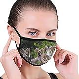 Dickhornschaf Ovis Canadensis Herde Tiere Wildlife Dust Gesichtsmaske, einstellbare Ohrschlaufen...