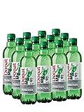 "Natürliches Magnesiumwasser – 500 mg Magnesium in 500 ml ""Donat Mg"" Großpackung 12 x 0,5 l"