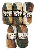 5 x 100 g Alize Strickwolle 40% Woll-Anteil, mehrfarbig mit Farbverlauf, 500 Gramm Wolle (braun...