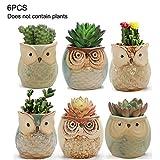 æ— Sukkulenten-Blumentopf, Keramik, Eulentopf, Kaktus, Daumenblume, Bonsai-Topf, Blumenvase,...
