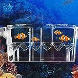 Aufzuchtbecken Aquarium Aquarium Zuchtbox Aquarium Inkubator Für Baby Fische Garnelen Guppy...