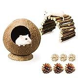 Natürliche Kokosnusshaus für Hamster, Kleintier Brücke Holzleiter mit 3 Stück Kiefernzapfen und...