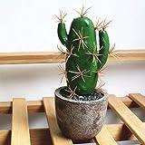 hainanaishun Künstliche Sukkulenten Blumentopf Fake Kaktus Alow Bonsai Haus Garten Dekoration Rot3