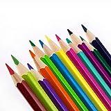 Cheniess Praktisch und Schön Farbstifte 48 Farbe ölig Farbe Blei-Zinn-Kasten for Kinder Graffiti...