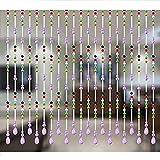 DSDD 30 Stränge Perlen Tür Vorhänge für Türen Perlen Perlen Vorhang für Raumteiler...