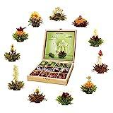 Creano Teeblumen Geschenkset in Teekiste aus Holz 12 Erblühtee in 11 Sorten weißer Tee, grüner...