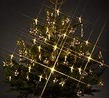 Trango TG340146 24x LED Weihnachtskerzen mit Stecksystem Innenbereich warm-wei