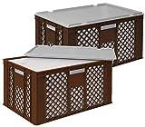 Set, 2x 35 Liter Thermobox aus EPS in Eurobox durchbrochen 600x400x320, braun, mit Deckel grau