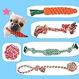 BUYGOO 5PCS Hundespielzeug Seil Kauspielzeug - Hunde Spielzeug Seil Interaktive Gesundheit Zähne...