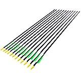 Anladia 12er Fiberglaspfeil für Bogenschießen, 30 Zoll (79 cm) Bogenpfeile Pfeile 30 Zoll...