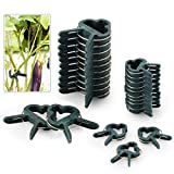 FORMIZON 80 Stück Pflanzenclips Stabile Clips Pflanzenklammern für Pflanzen Sicherung Unterstützt...