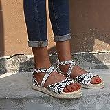 ZRSH Damen Sandalen, Damen Mode Sommer Fischmaul Gummiband Sandalen Reißverschluss hinten...
