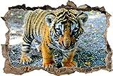 QAW Wandtattoo Niedliches Baby Tiger zerschlagen Wandtattoo Wandaufkleber Dekor Kunst Wandtiere