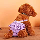 MYYXGS Hund Physiologische Hose Haustier Physiologische Hose Teddy Hund Menstruationshose Polka Dot...