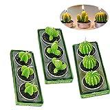 SoundZero 9Pcs Kaktus Kerzen, Duft Teelichte, handgefertigt Zarte Sukkulente Kaktus Kerzen, Pflanzen...