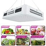 Grow Light, 1000W LED Pflanzenlicht Grow Lamp Vollspektrum Doppelschalter für Gewächshauspflanzen...