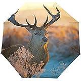 Deer Forest Morning Sunlight Winddichte Regenschirme Auto Open Close 3 Faltbarer Sonnenschirm-X2-M1Y