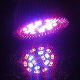 Akaddy Vollspektrum Grow Licht 18W LED Grow Lampe für Flower Plant E27 Flower Plant Light