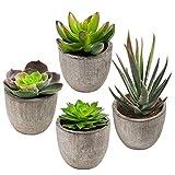 CDWERD 4 Stücke Künstliche Sukkulenten Pflanzen kunstpflanze mit Töpfen Tischdeko Balkon...