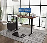 Flexispot E1 Elektrisch Hhenverstellbarer Schreibtisch mit Tischplatte 2-Fach-Teleskop, mit...