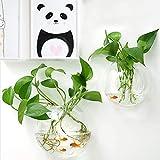 YHNHT Wand-Aquarium, zum Aufhängen, Wandmontage, für Betta-Aquarium, Wanddekoration, Pflanze,...