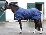 PFIFF 101672 Pferde Stall Decke Orlando, Winterdecke Pferdedecke Stalldecke, Blau 125 cm