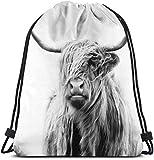 NA Portrait of A Highland Cow 3D Print Drawstring Backpack Rucksack Shoulder Bags Gym Bag for Adult...